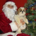 Danny and Santa Paws